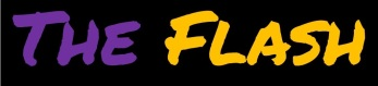 flash-logo-4